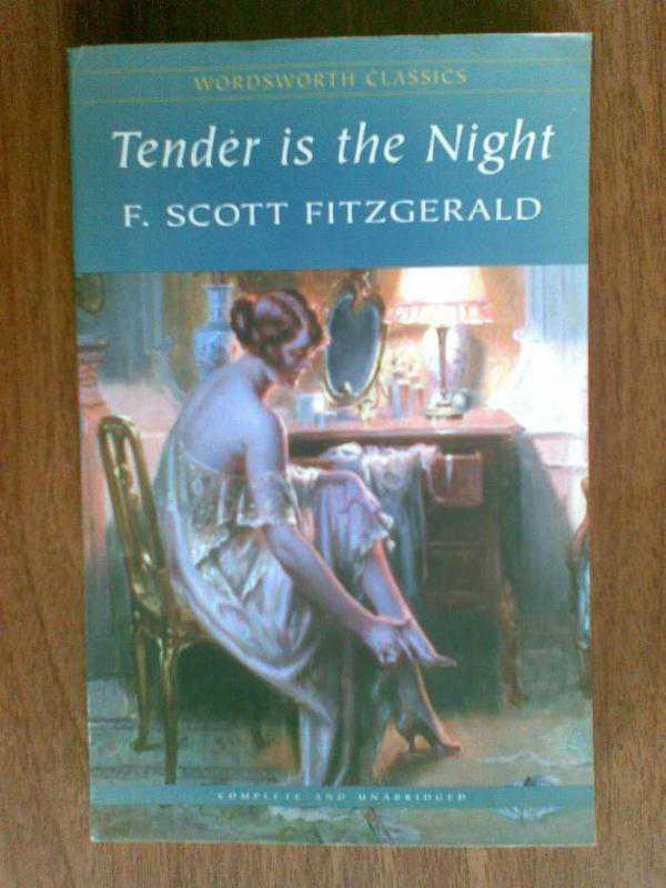 fitzgerald tender is the night essay Tender is the night, the book that caused f scott fitzgerald the most artistic heartache, was neither a critical nor a commercial success when it was first published in 1934 but its reputation has, rightly, grown and it remains one of my favourite books, suffused as it is with both the glamour and poignancy.