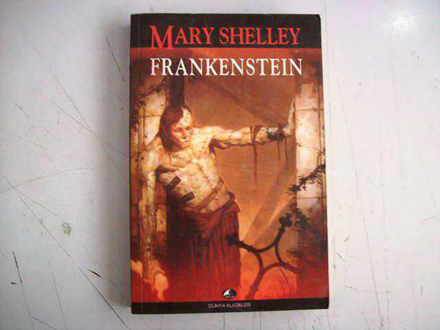 the theme of friendship in frankenstein by mary shelley Frankenstein might seem to suggest that having a good family is the solution to all of society's problems (like murderous monsters), but we're not so sure the one nice family we see ends up exiled in a cottage in the middle of the woods.