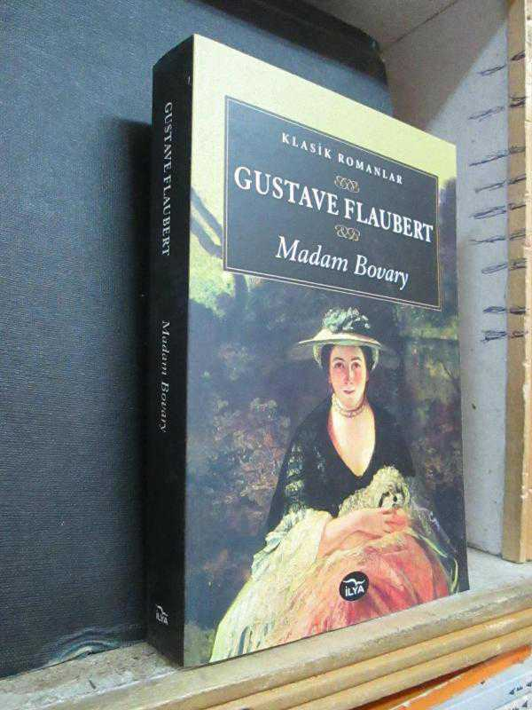 social stratification and mobility in madame bovary by gustave flaubert A la recherche is a novel, and a deep meditation on time, culture, social stratification, aristocracy, carnal love, homosexuality, obsession, the roots of art and modernism, semitism, antisemitism, men's and women's fashion, the dream quality of place names, family names, religious iconography, architecture.