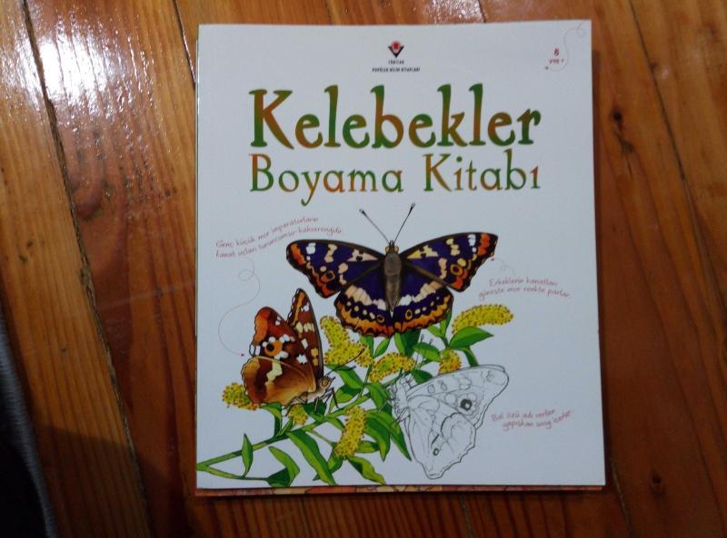 Orman Yaban Hayati Boyama Kitabi Kuslar Boyama Kitabi